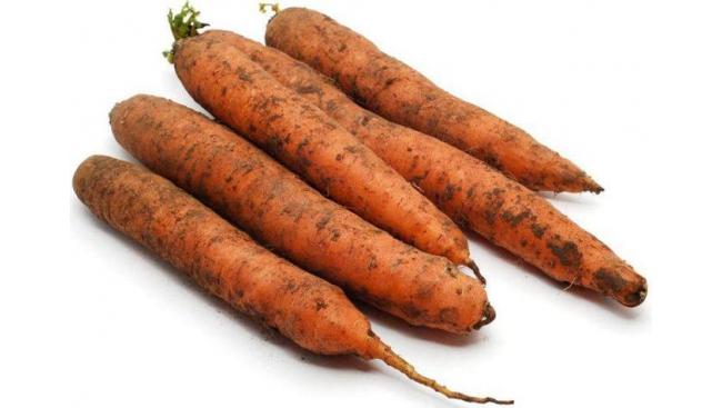 Морковь весовая